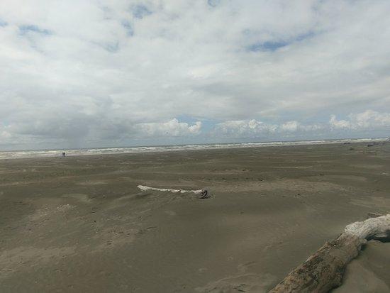 Pacific Beach, WA: IMAG0637_large.jpg