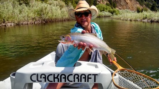 Plains, Монтана: Fly fish the Flathead or Clark fork River