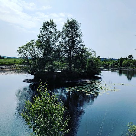 Tregaron, UK: One of the wonderful views.
