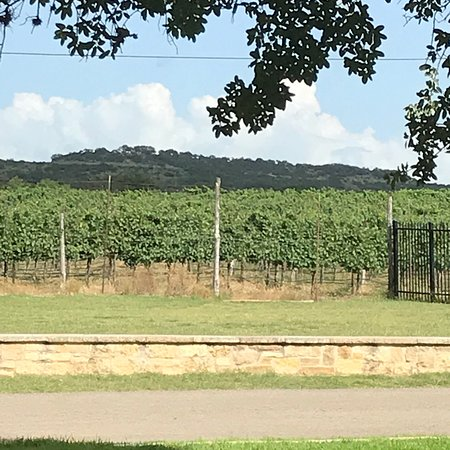 Spicewood Vineyards 2020 All You Need To Know Before You