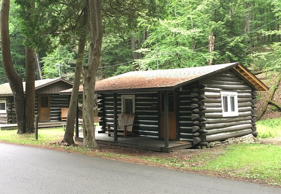 Sigel, PA: Cabin #3 on the right just past the nature center.
