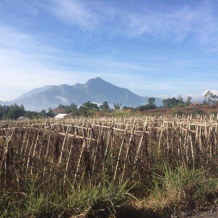 Mount Bali Trekking
