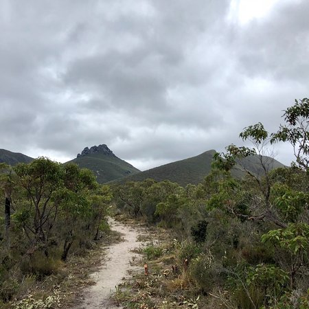 ‪‪Stirling Range National Park‬, أستراليا: photo0.jpg‬