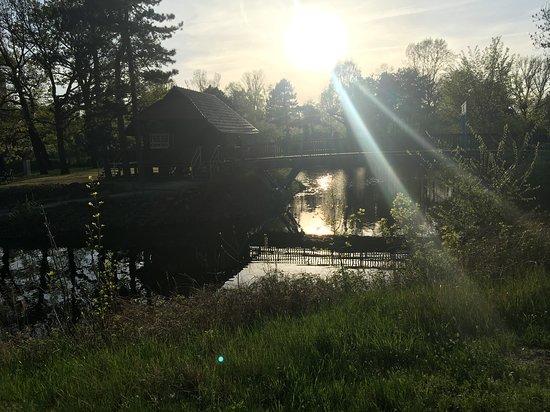 Stadtpark Rotehorn Foto