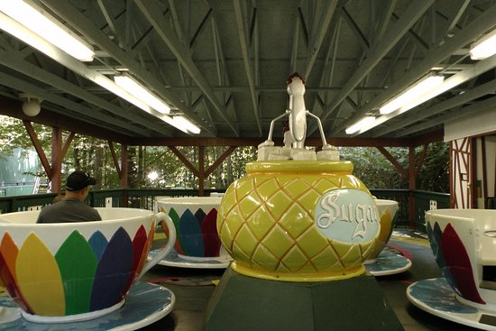 Story Land: Teacup ride