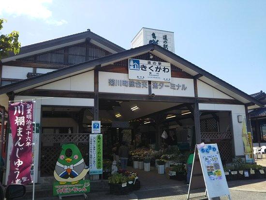 Michi-no-Eki Kikugawa