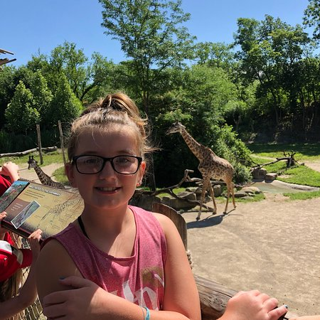 Cincinnati Zoo Botanical Garden 2018 All You Need To Know Before You Go With Photos