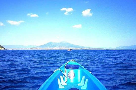 Experiencia salvaje de Kayak en...
