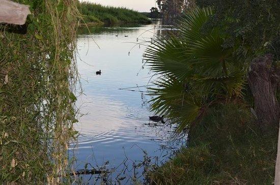 サン・ホセ・デル・カボの自然、野生生物、人間ストーリーツアー