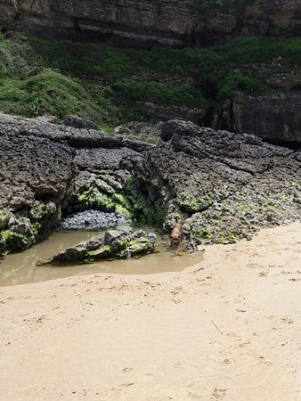 Ajo, Spain: Playa de Antuerta