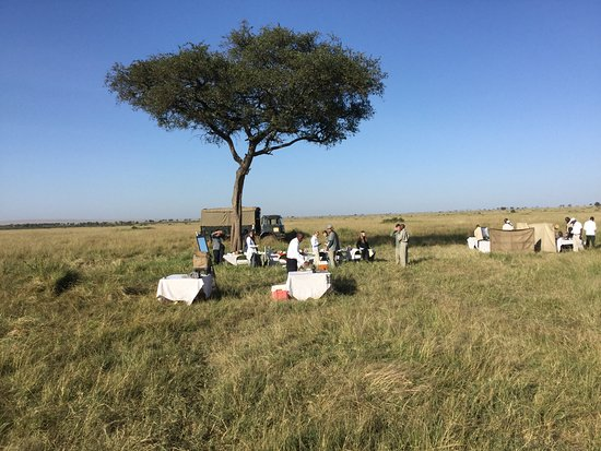 Mara Serena Safari Lodge: Breakfast on the bush at the end of the hot air balloon