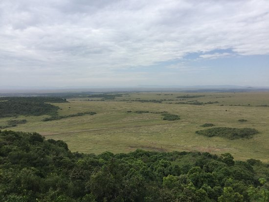 Mara Serena Safari Lodge: View from the lodge