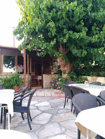 Episkopi, Cyprus: P_20180616_192907_vHDR_Auto_large.jpg