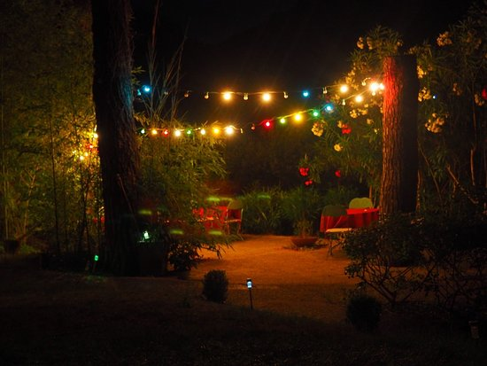 Castillon-du-Gard, Frankrike: La terrasse le soir un air de guinguette!