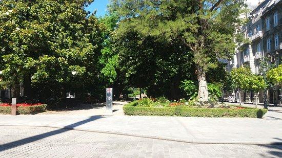 Alameda da Praza de Compostela