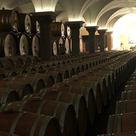 Cantina Zeni e Museo del Vino