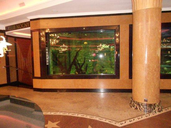 Hotel Golebiewski: Akvárium u recepce