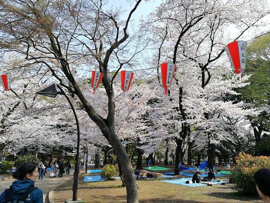 Parco-ya Ueno