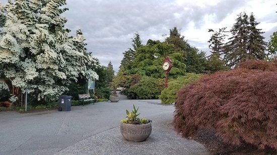 Seasons in the Park: 20180615_210819_large.jpg