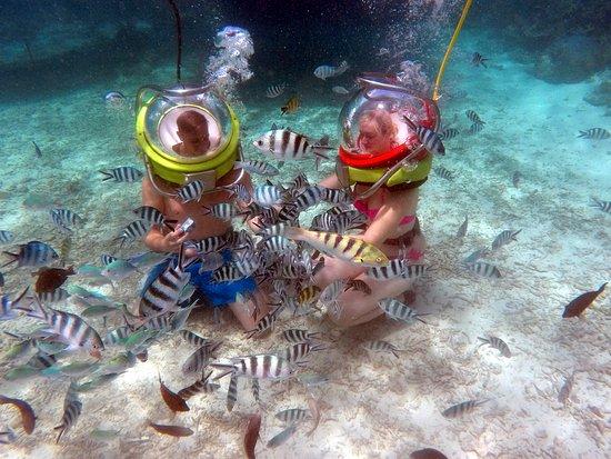 Aquaventure