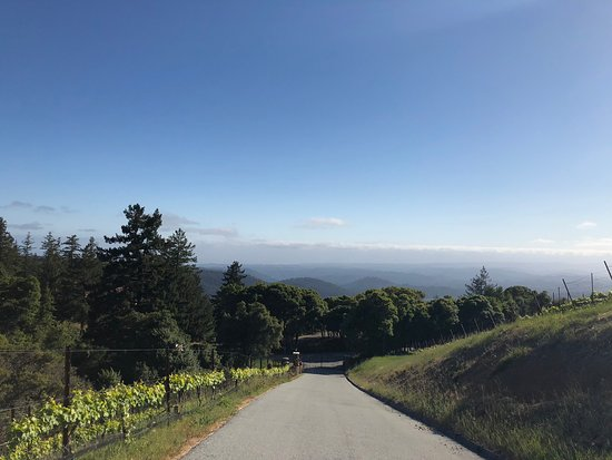 Loma Prieta Winery: steep entrance to the winery