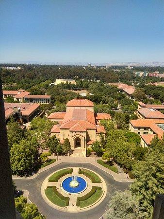 Palo Alto, CA: IMG_20180616_145411_HDR_large.jpg