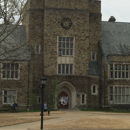 Rhodes College Memphis 2020 All You Need To Know