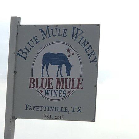 Fayetteville, TX: Winery
