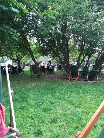 The Orchard Tea Garden照片
