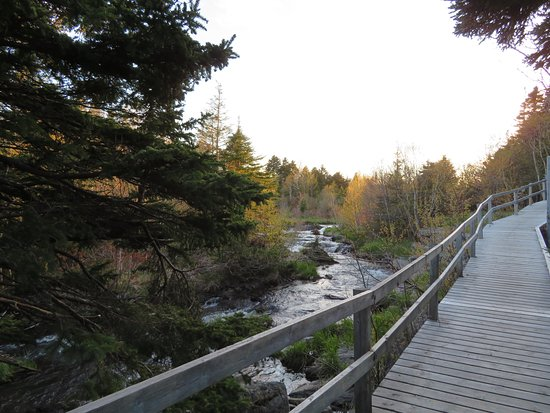 Mount Pearl, Canada: nearby river walk