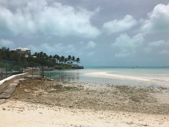 Taylor Bay Beach-billede