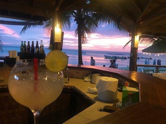 Paradise Beach Hotel : Literally Paradise - Natures canvas.