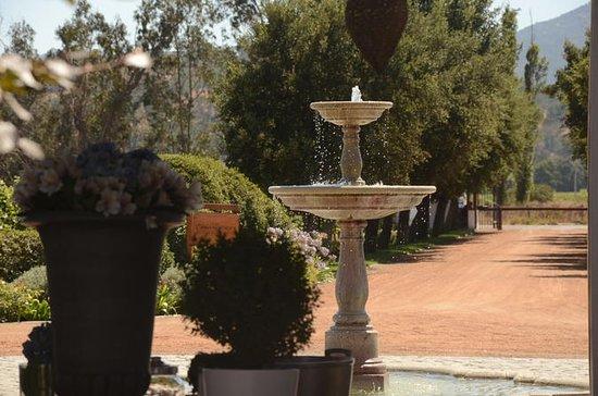 Casablanca 5 hour Wine Tour