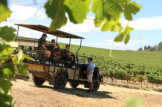 Full-Day Private Wine Safari and...