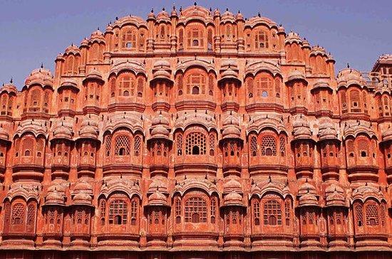 델리 출발 : 자이 풀 (Jaipur) 당일 치기 여행 사진
