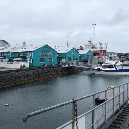Icelandair Hotel Reykjavik Marina: photo2.jpg