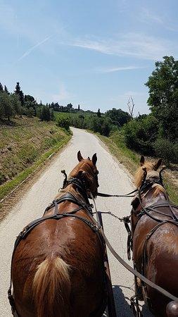 Montagnana Val di Pesa, Italy: 20180617_120102_large.jpg