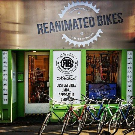 reanimated bikes