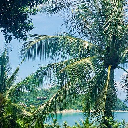 Panviman Resort - Koh Pha Ngan: photo3.jpg