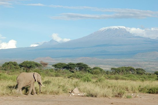 Foot On Kili Tanzania照片