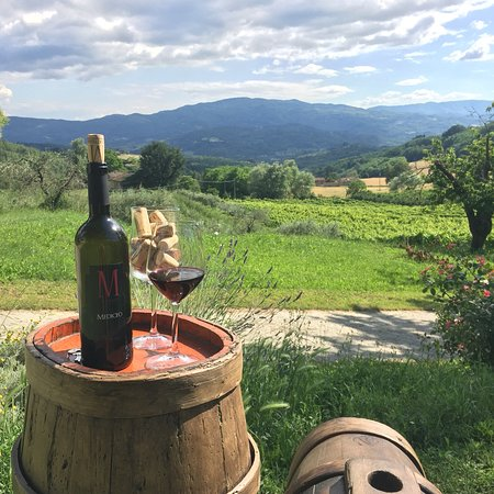 Vicchio, Italia: La Matteraia Agritorismo and wine tasting room