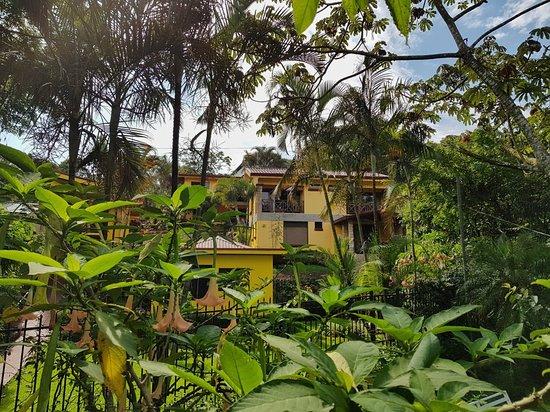 Grecia, Costa Rica: 20180616_084956-01_large.jpg
