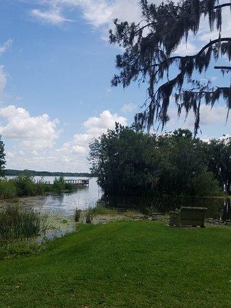 Lake Panasoffkee, FL: 20180617_113812_large.jpg