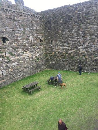 Beaumaris Castle: Dog friendly