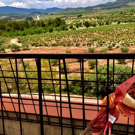 Corbera d'Ebre, Spanien: photo1.jpg