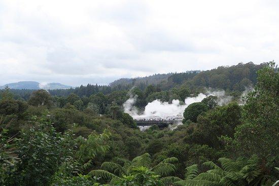 Pueblo maorí: The Thermal