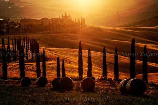 Torrita di Siena, Italie : Crete Senesi