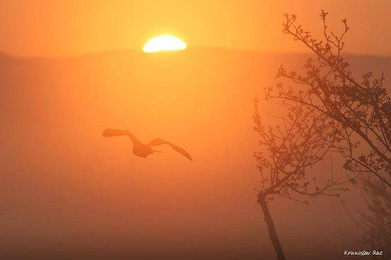 Sveti Juraj, Croatia: Sunset in Velebit by Krunoslav Rac