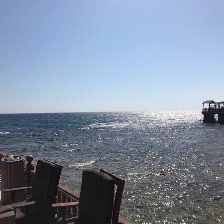 bhadur resort jeddah hotel reviews photos rate comparison rh tripadvisor in