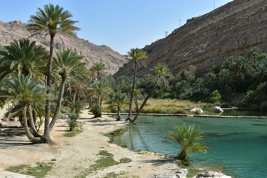 Ash-Sharqiyah Governorate照片
